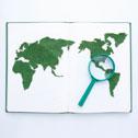 글로벌 W
