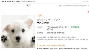 [단독]8천원짜리 창덕궁 낙선재 특별관람 티켓이 6만원에 뒷거래