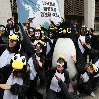 '오늘은 펭귄의 날', 남극해를 지키기 위해 모인 펭귄 무리