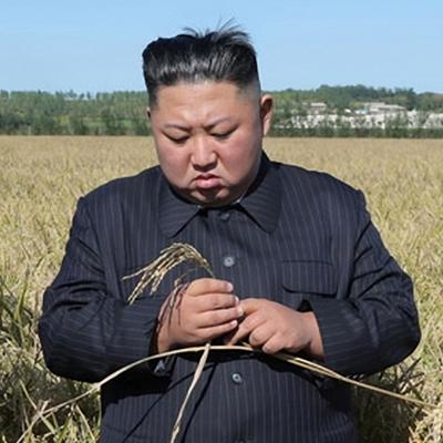 협상 결렬 후 '벼이삭' 집어든 김정은
