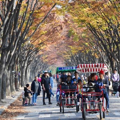 '만추'...막바지 가을을 즐기는 나들이객들