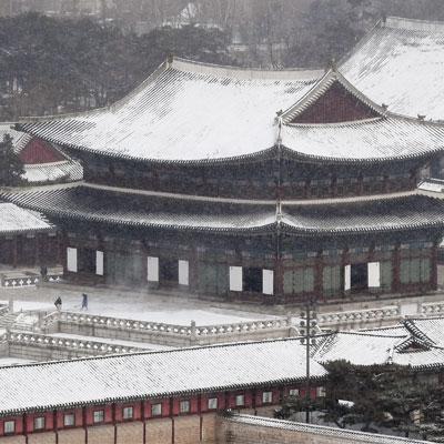 오랜만에 내린 함박눈에 서울 곳곳에 핀 눈꽃