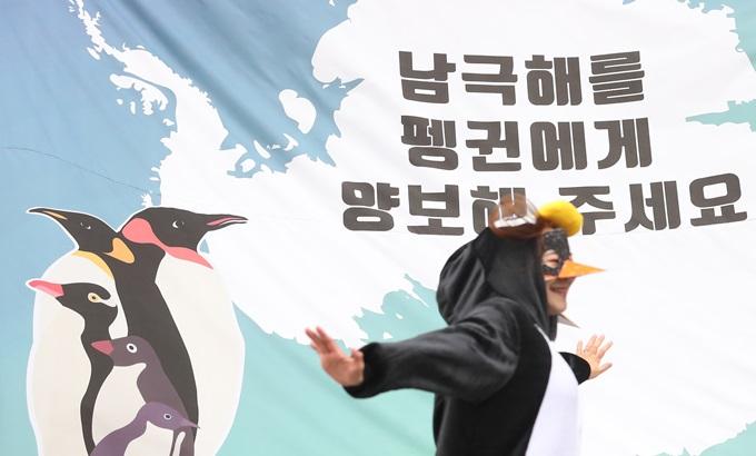 """""""오늘은 펭귄의 날"""", 남극해를 지키기 위해 모인 펭귄 무리"""