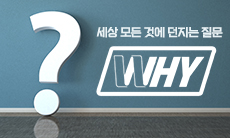 WHY(와이)