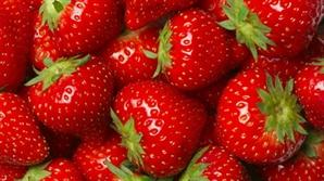 """""""맛 좋은 딸기 좋아하는데…"""" 먹고 싶어도 못 먹는 사연"""
