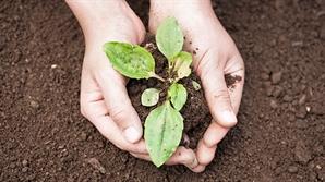 수출부진에도 농식품은 고공행진…1월 기준 최대치
