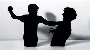 피해자 동의 없어도 가정폭력 현행범 체포 가능해진다