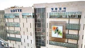 '롯데 수성 vs 신세계 도전' 영등포역 입찰 전쟁
