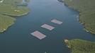 환경오염 없는 '태양광 섬'…500兆 시장 볕든다