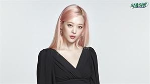 """경찰, 설리 부검 1차 결과..""""타살 협의점 없다"""""""