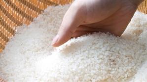 WTO, '韓 쌀 관세율 513%' 승인 인증서 발급