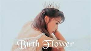 '트로트 퀸' 홍진영, 신곡 명은 '사랑은 꽃잎처럼'