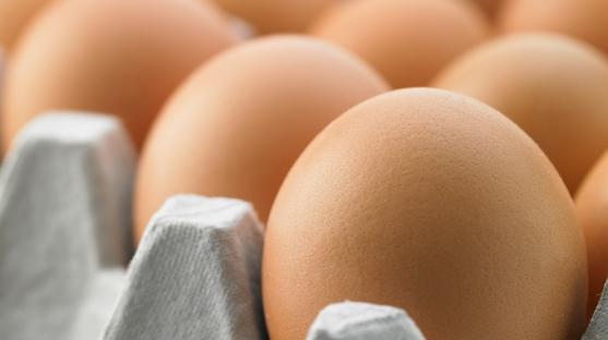 집콕에 밥상물가 급등...배추 96%·달걀 20%↑
